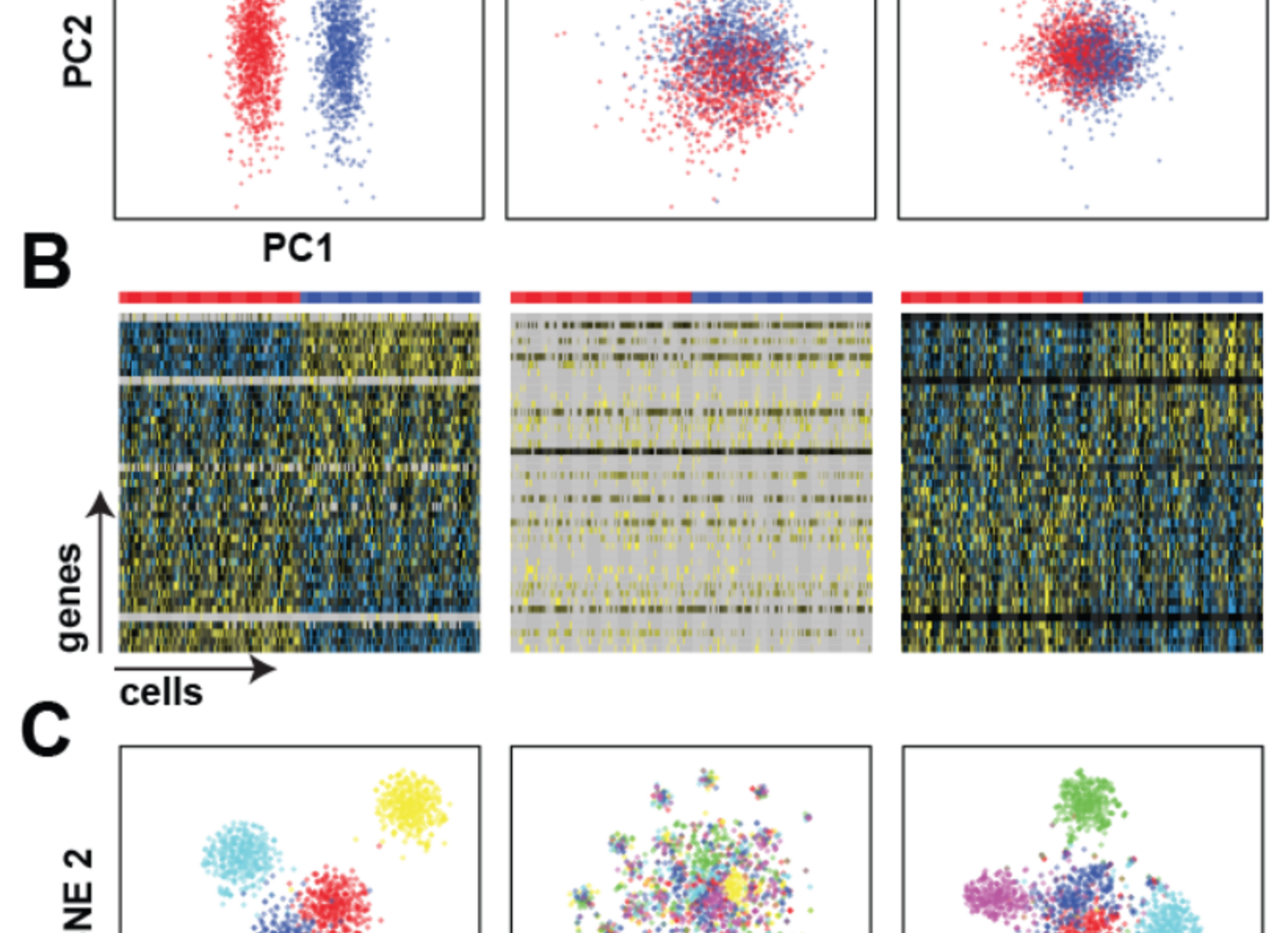 Single cell RNA-seq denoising using a deep count autoencoder (April 2018) -